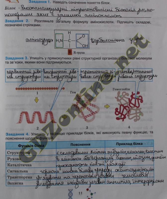 Решебник печатной аснови по биологии 7 класс вихренко т к