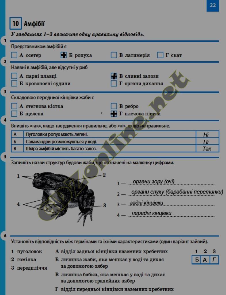 Ответы к печатной тетради по биологии 7 класс т с котик