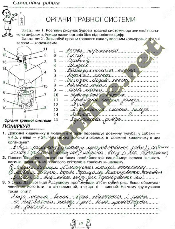 Лабораторные работы по биологии а с вихренко 8 класс