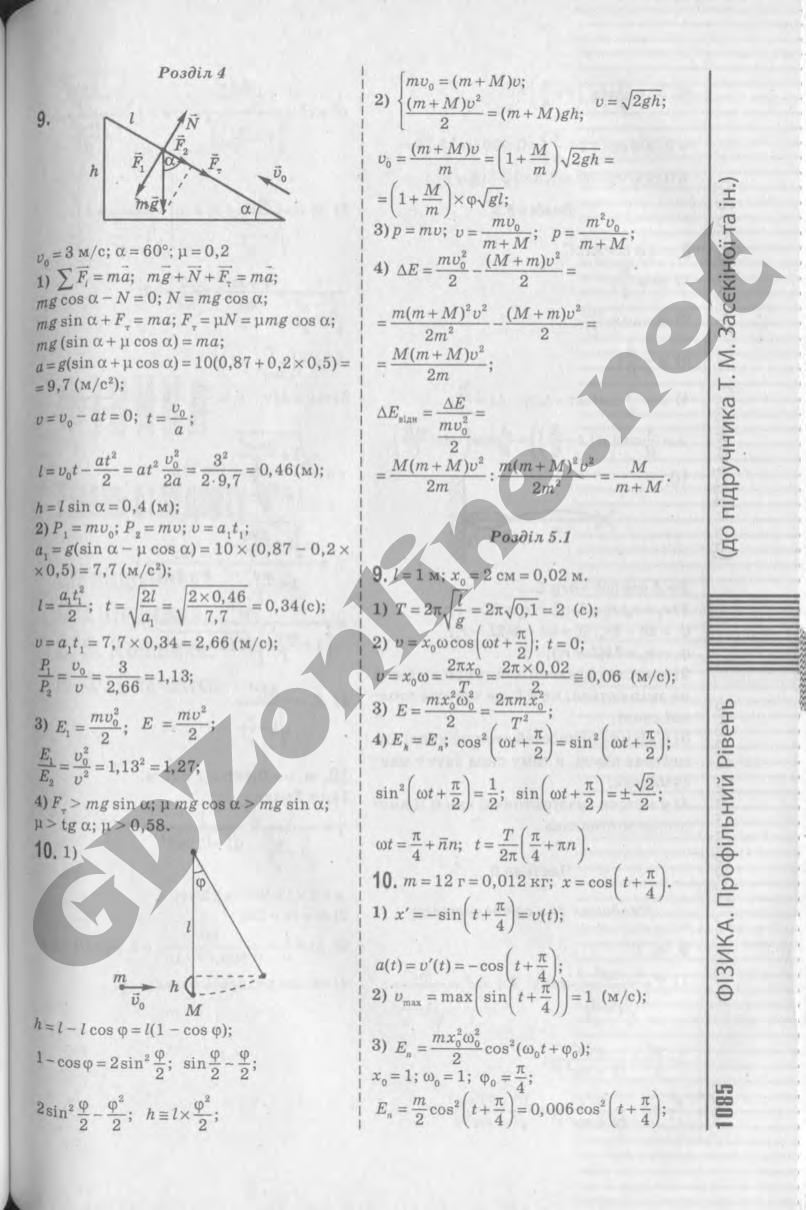 гдз физика засекина головко 10 класс