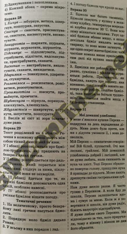 Українська мова, Украина 2013